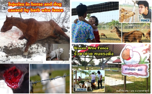 ลวดหนาม และ รั้วตาข่าย (Barb wire and Woven wire fence)
